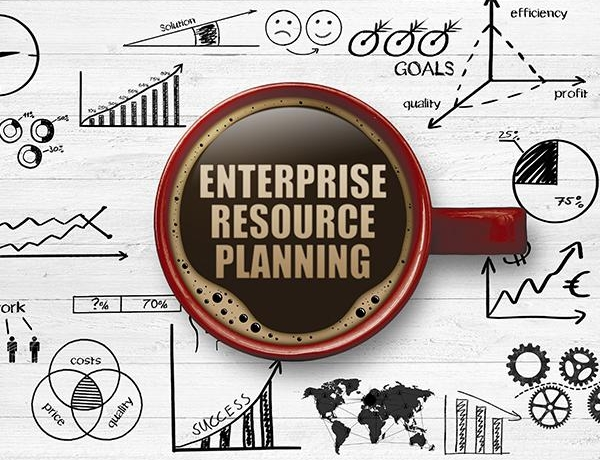 The Basics of ERP Software